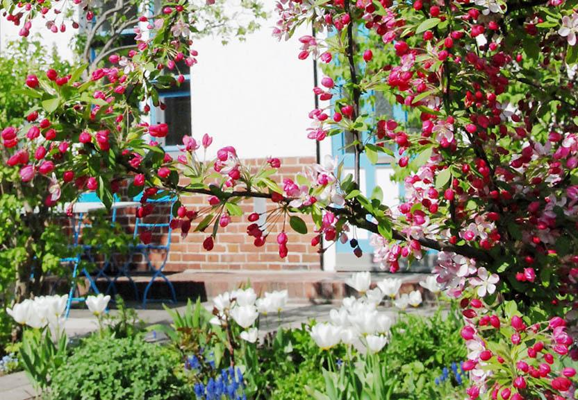 Garten puts langt danske ord